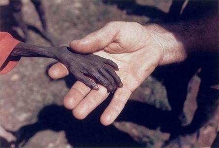 Lòng trắc ẩn ở đâu?