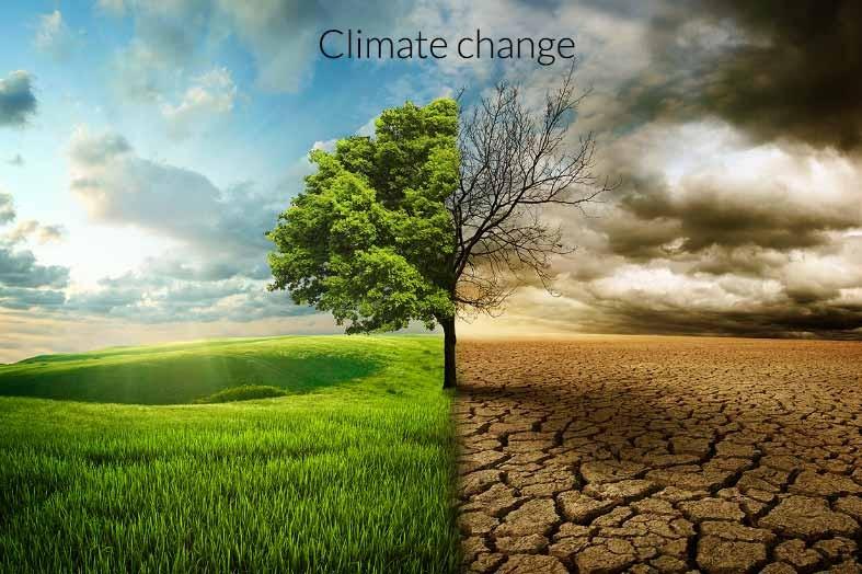 Biến đổi khí hậu khiến nhiều người 'ngán'... sinh con