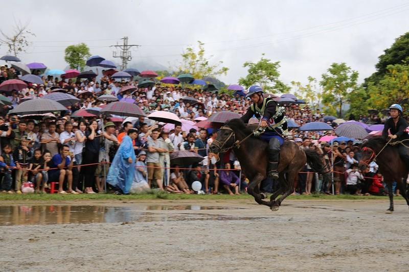"""""""Vó ngựa trên mây"""" - giải đua ngựa lần đầu tiên được tổ chức tại Fansipan"""