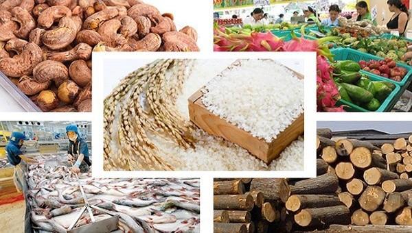 Xuất khẩu nông sản trước cơ hội và thách thức mới