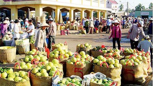 Nông sản dồn ứ không thể xuất khẩu sang Trung Quốc: Nguyên nhân từ đâu?