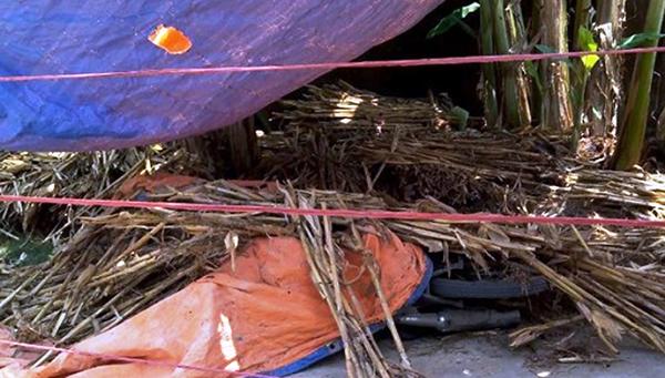 Điều tra nguyên nhân hai vụ án mạng trong một ngày tại Quỳnh Lưu