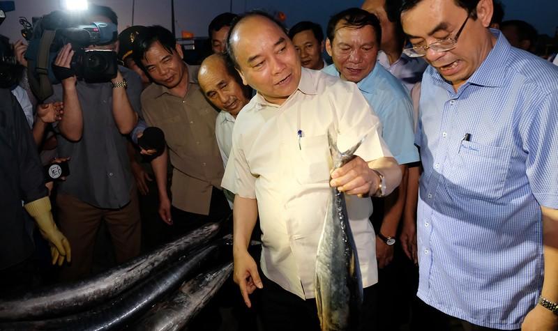Chia vui với ngư dân miền Trung, Thủ tướng mua 10kg cá 'đãi' đoàn công tác