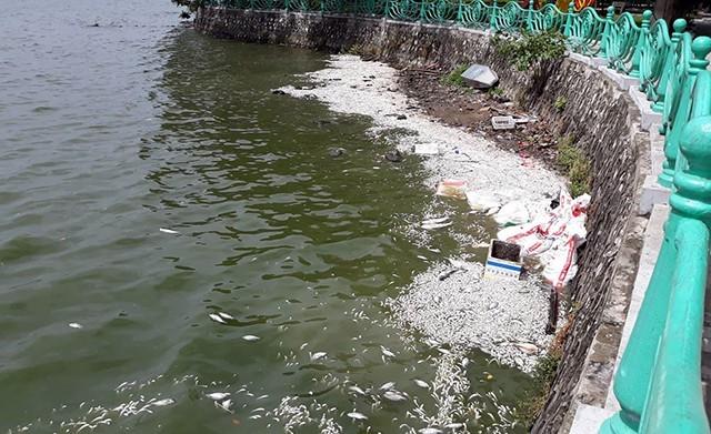 Hồi tháng 10/2016, có hiện tượng hàng trăm tấn cá chết ở Hồ Tây. Lực lượng chức năng mất cả tuần mới xử lý xong. (Ảnh: Phạm Công)