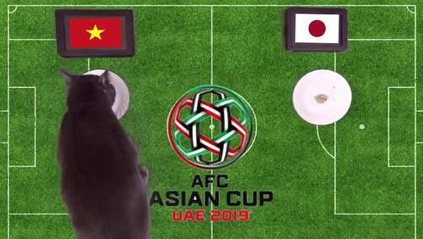 Mèo tiên tri dự đoán Việt Nam thắng Nhật Bản ở Asian Cup