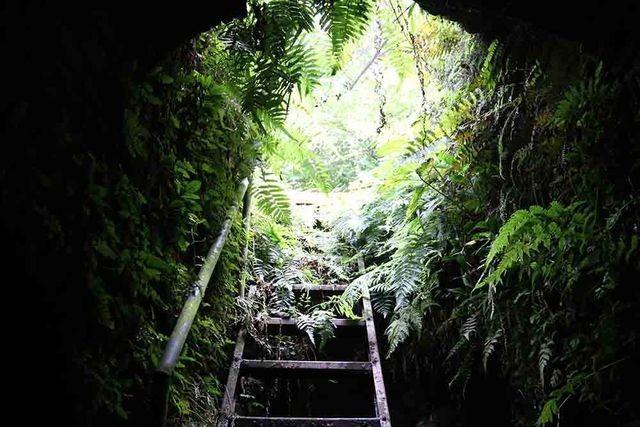 Hà Nội: Bí ẩn hang ngầm dưới đình cổ giáp hồ Tây - 2