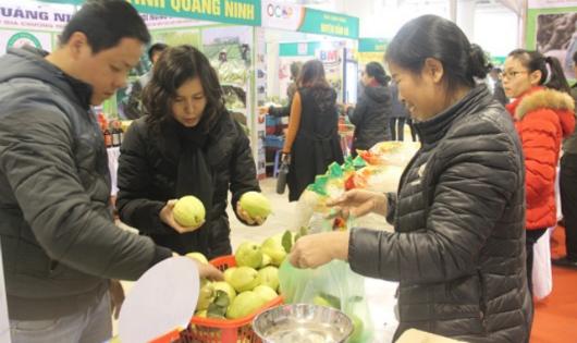 Quảng Ninh: 10 năm, thu nhập người dân nông thôn tăng hơn 4 lần