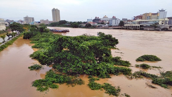 Mưa lũ trên sông biên giới khiến một người mất tích, hàng chục đò sắt bị đắm
