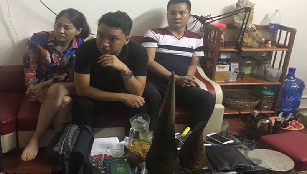 Bắt người phụ nữ Quảng Ninh liên quan đường dây mua bán lậu hàng quý hiếm
