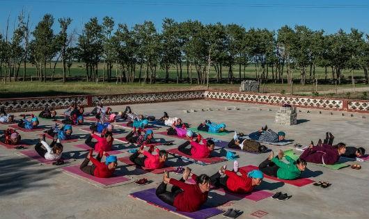 """Yoga – sức mạnh """"cải lão hoàn đồng"""""""