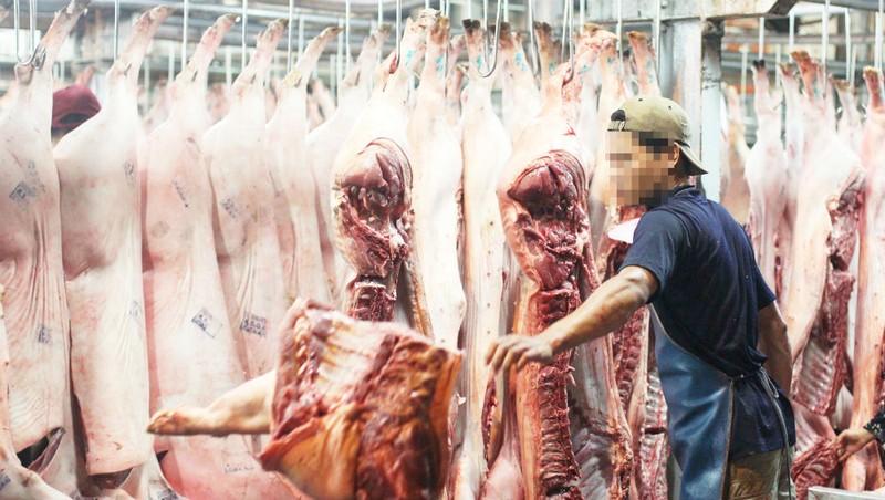 TP Hồ Chí Minh: Vướng mắc trong quy hoạch nhà máy giết mổ gia súc, gia cầm