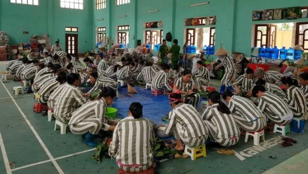 Tăng cường thuyết phục phạm nhân ở Ninh Thuận thi hành án