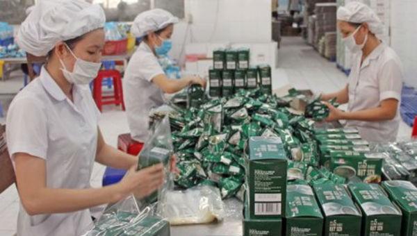 Cần Thơ: Thúc đẩy sản xuất sạch hơn trong công nghiệp