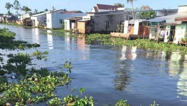 Hậu Giang xác định nguyên nhân gây ô nhiễm sông Cái Lớn