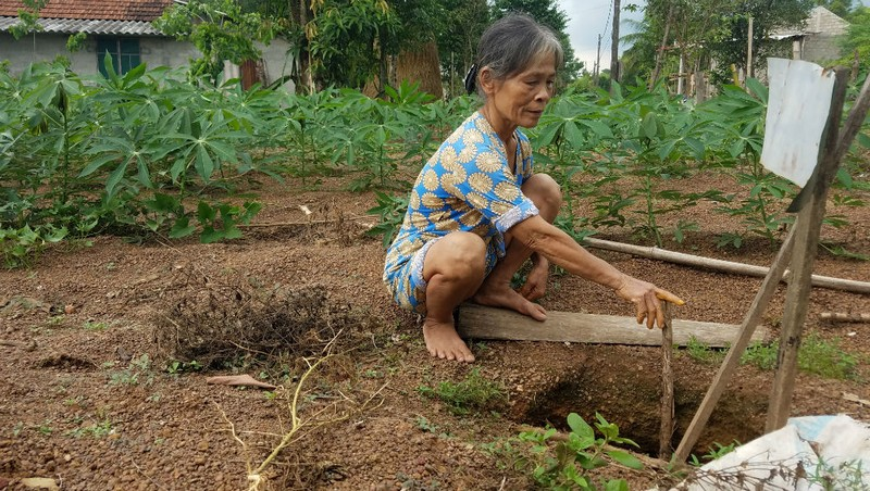 Bất thường nhiều khu ruộng bị sụt lún, nông dân Thừa Thiên- Huế: lo lắng