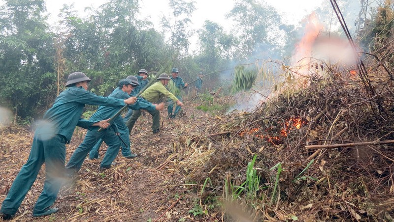Quân đội tham gia cứu hộ cứu nạn mưa lũ, cháy rừng