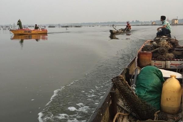 Bắt giữ đò máy tận diệt thủy sản trên phá Tam Giang