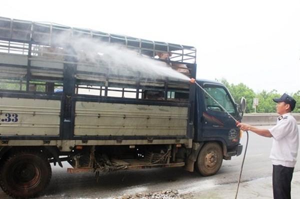 Thừa Thiên-Huế: Công bố hết dịch tả lợn châu Phi