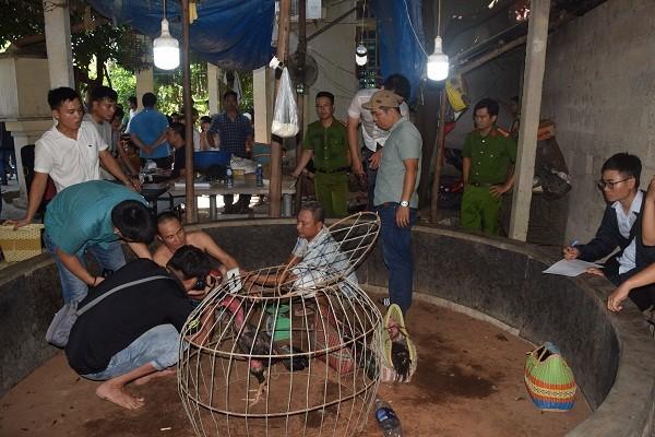Bắt hàng chục đối tượng đánh bạc dưới hình thức đá gà ở Thừa Thiên Huế