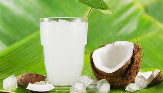Uống nước dừa khi đi nắng về có thực sự tốt cho sức khoẻ?