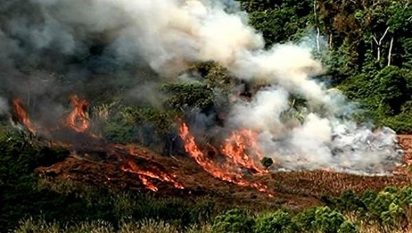 Quảng Trị: Cháy khi đốt thực bì, một người tử vong