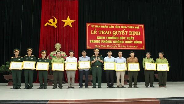 Khen thưởng 13 tập thể, cá nhân chữa cháy rừng ở Thừa Thiên Huế