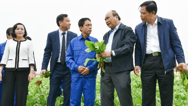 Năng suất nông nghiệp Việt Nam cần phải tập trung vào đâu?