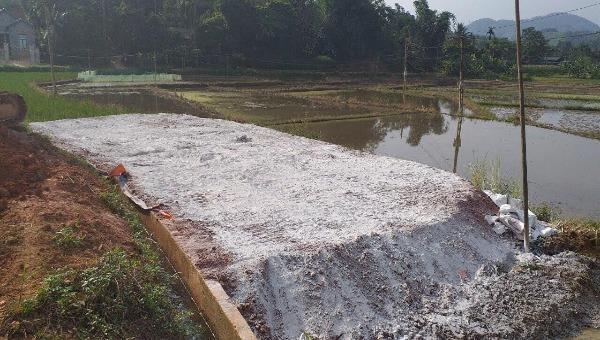 Lào Cai: Xã Phú Nhuận thực hiện nghiêm thủ đúng quy trình tiêu hủy lợn bị mắc dịch tả lợn châu Phi