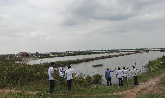 Hàng loạt câu hỏi trong vụ tỉnh Ninh Bình cho doanh nghiệp thuê đất bãi bồi ven biển 70 năm