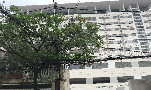 Cần thanh tra toàn diện việc chấp hành pháp luật về xây dựng đối với khu điều trị chất lượng cao tỉnh Thái Bình